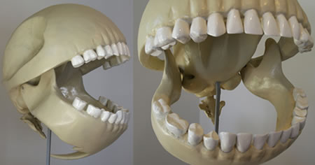 PacMan Skeleton