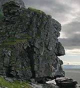 Nordmann's picture
