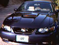 MustangGT's picture